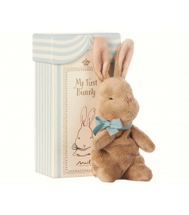 My First Bunny in Box - Blue